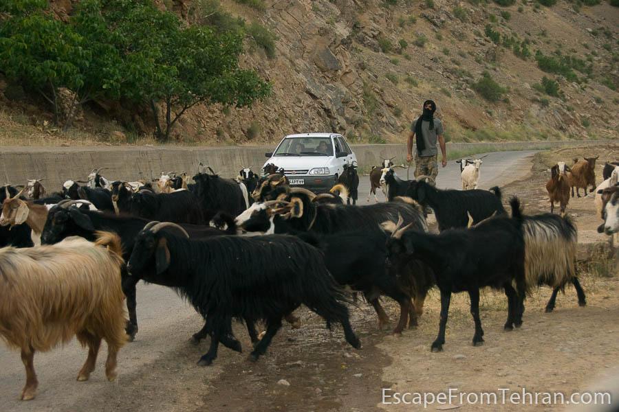 lorestan_iran_travel_ali.torkzadeh.com-3