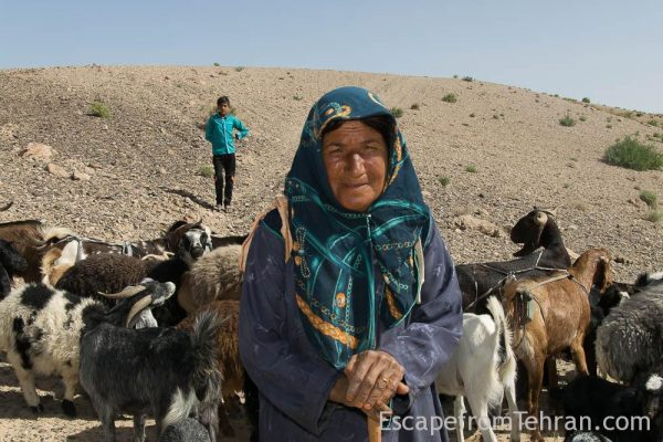 Shepherds Of Iran Central Iran Ali Torkzadeh Com (101 Of 13)