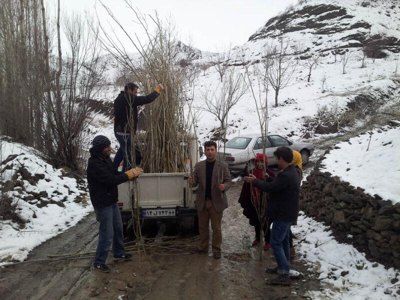 Payeh Khorasan Escapefromtehran Ali Torkzadeh Com 13
